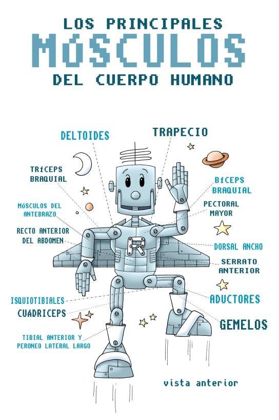 Fichas para aprender a dibujar el cuerpo humano